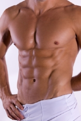 The abdominals have 4 main muscle groups